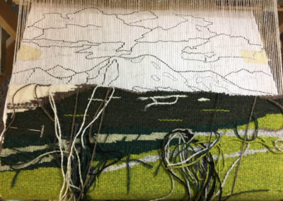 Celebrating Our National Parks: A Woven Tribute Show 2021